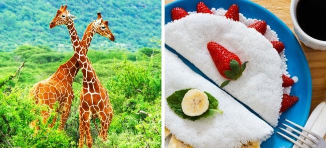 Giá phòng tại các nhà nghỉ và khách sạn ở Nam Phi có giá từ 9 euro, trong khi bữa tối tại một nhà hàng khoảng 6-7 euro/suất và đồ ăn nhanh rẻ hơn chỉ từ 3 euro/suất. Nếu di chuyển bằng phương tiện công cộng, bạn chỉ tốn 1 euro/lượt.