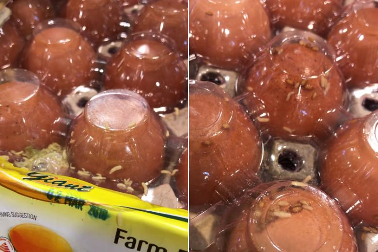 Giòi từ trong những khay trứng tại siêu thị Giant, Singapore.