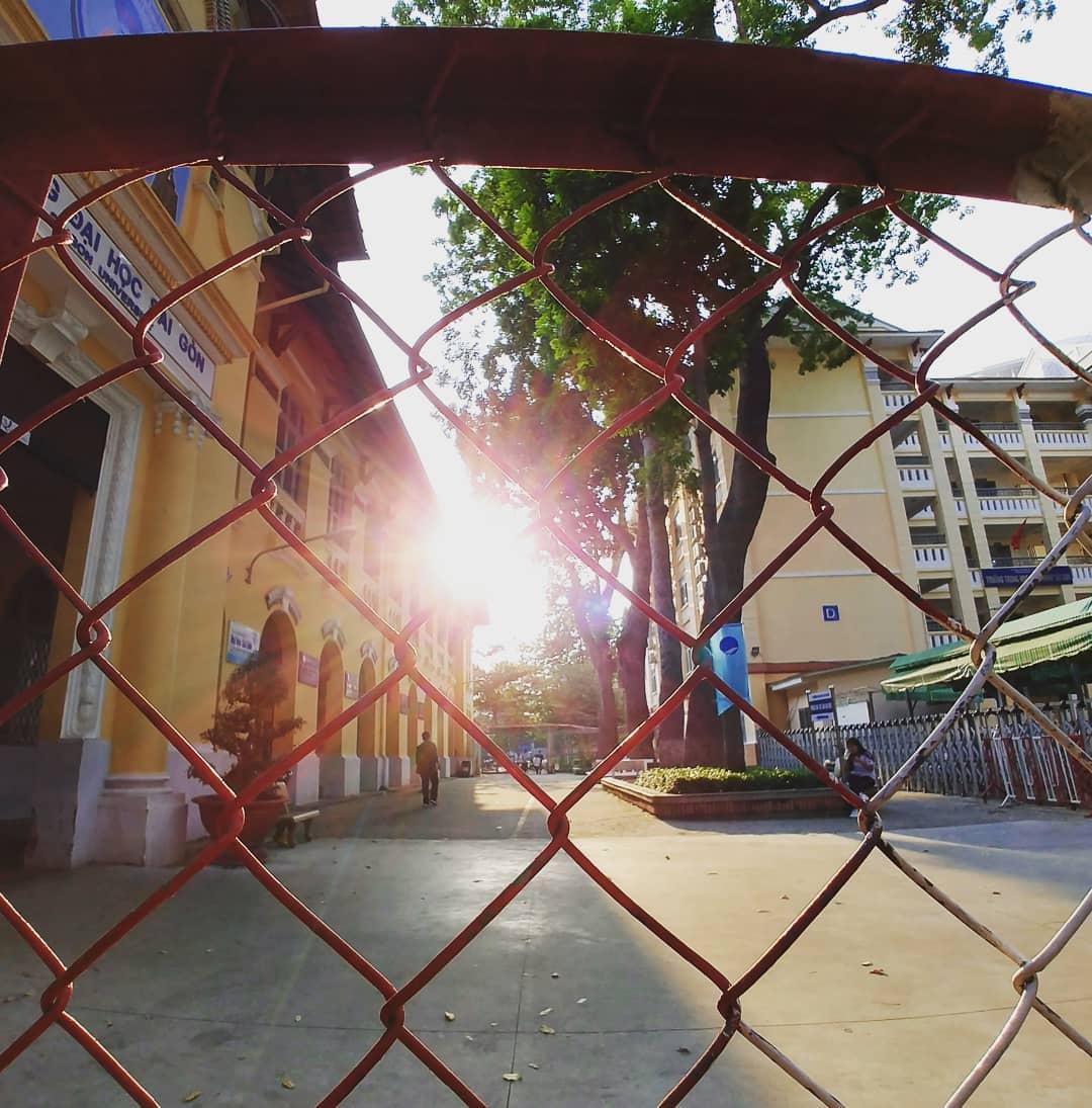 Nắng chiều rực rỡ về trên sân trường Đại học khi nhìn qua rào chắn.