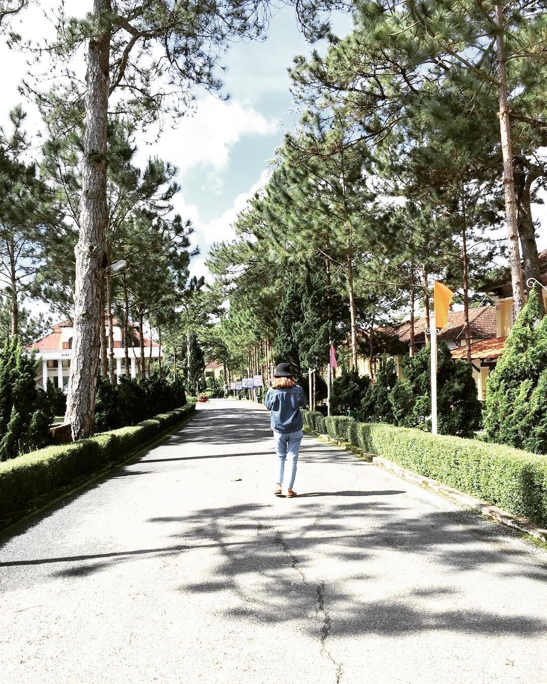 Theo chân cô nàng tomboy khiến dân mạng lụi tim dạo quanh trường ĐH Yersin Thánh địa sống ảo ở Đà Lạt mộng mơ