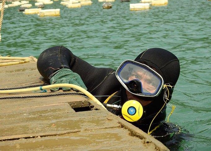 Các lồng ngao đượt đặt dưới đáy biển sâu khoảng 5m vì vậy từ lúc thả giống đến khi thu hoạch đều cần thợ lặn làm việc. Thợ lặn được trang bị bình oxy, xung quanh người quấn các cục chì lớn để thời gian chìm xuống đáy biển nhanh hơn. Phía trên có hai người dùng dây kéo thợ lặn và lồng ngao lên.