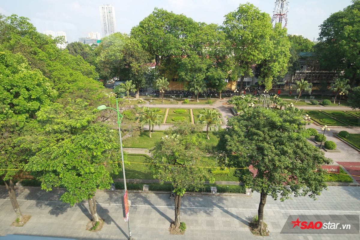 Hóa ra đường phố Hà Nội cũng nhiều cây xanh lắm chứ…