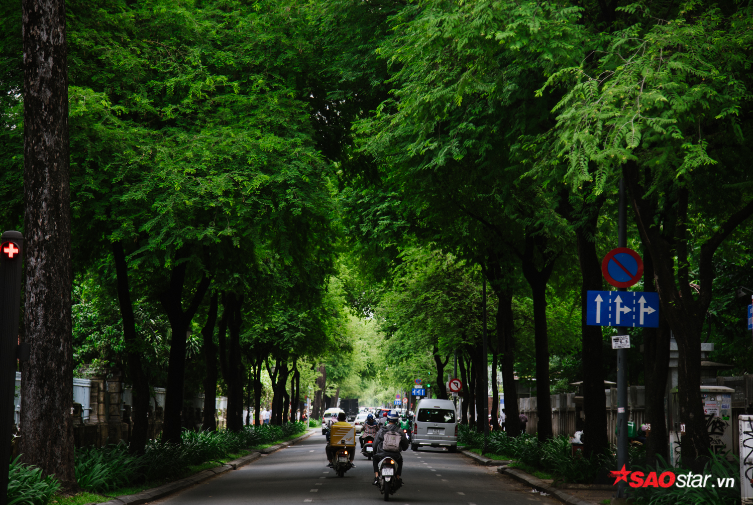 Hàng me xanh mướt trải dài khắp con đường Lý Tự Trọng vào buổi sớm.