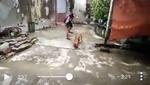 Cảnh giết chó trong bao tải gây phẫn nộ