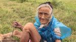 Sự thật về cụ bà 90 tuổi lặn lội mò cua bắt ốc giữa mùa đông Hà Nội