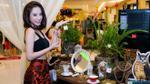 Mr. Đàm, Angela Phương Trinh và bệnh 'nghiện' mua sắm