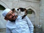 Thánh đường Hồi giáo mở cửa chào đón mèo hoang gây sốt mạng xã hội