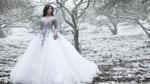An Japan khoe ảnh 'công chúa băng' giữa Mộc Châu phủ tuyết