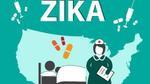 [Infographic] Virus 'ăn não' Zika và những điều cần phải biết
