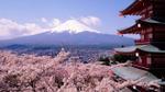 4 thiên đường ngắm hoa anh đào đẹp nhất từ Đông sang Tây