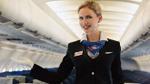 Sự thật mà các tiếp viên hàng không chẳng bao giờ muốn tiết lộ