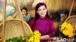 Phi Nhung 'van nài' để được làm thí sinh Ngôi sao phương Nam