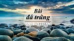 Ngất ngây trước 'bãi trứng khủng long' độc đáo ở biển Quy Nhơn