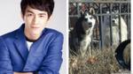 Lâm Canh Tân bị dân mạng 'ném đá' vì chê chó nhà hàng xóm… ngu