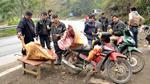 Lào Cai: Rét 'nàng Bân' khiến trâu Sa Pa lại chết hàng loạt