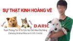 Vạch trần bộ mặt thật của Trạm thông tin và cứu hộ chó mèo Đà Nẵng