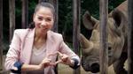 Thu Minh vinh dự giành quyền đưa tê giác về thiên nhiên hoang dã châu Phi
