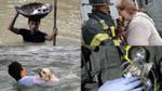 Cách mà con người liều mình cứu giúp động vật thật đáng ngưỡng mộ!