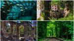Đi vòng quanh thế giới, chợt nhận ra kiến trúc sư tài ba nhất vẫn là… thiên nhiên