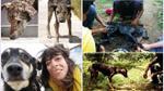 Những câu chuyện cảm động giữa con người với động vật khiến chúng hồi phục như một phép màu