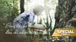 Những chú sóc ở công viên và 'đặc sản' lòng tử tế của người Sài Gòn