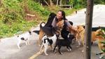 Cho chó ăn mỗi ngày, người phụ nữ Thái Lan không ngờ chuyện này lại xảy ra