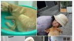 Giận hờn, nam thanh niên ở Sài Gòn tra tấn dã man chú chó của bạn để trả thù
