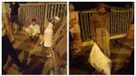 Hà Nội: Nam thanh niên lợi dụng đêm vắng cướp tiền của bà cụ 'điên' đang đi lang thang