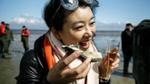 Giữa khủng hoảng hàu Đan Mạch, một phụ nữ Trung Quốc hoá người hùng nhờ thu hoạch 150kg hàu