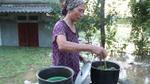 Nước lũ dâng cao nhấn chìm nhà dân, người Hà Nội lên giường ngồi ăn cơm