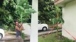 Video người phụ nữ lao ra vườn, oằn mình ôm cây đu đủ giữa gió bão khiến dân mạng 'phát sốt'