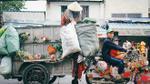 Tết đã cận kề thế này rồi trên chiếc xe rác chở đầy mùa xuân ở Sài Gòn