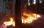 3 vụ cháy lớn xảy ra liên tiếp trong ngày Tết Táo quân