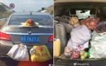 Đã ăn Tết 'no nê' lại còn được chất gạo, thịt, rau củ… đầy cốp xe lên thành phố