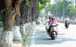 Dự báo thời tiết 1/3: Miền Bắc ấm dần, Nam Bộ nắng nhẹ