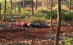 Đi vào rừng tìm mật ong, 2 cha con bị sát hại