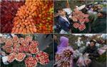Khung cảnh náo nhiệt ở chợ hoa lớn nhất Hà Nội trước ngày mùng 8/3