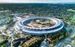 Apple làm cửa kính trụ sở quá trong suốt, nhân viên bị 'đụng đầu' liên tục