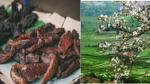 Lên ngắm 'đặc sản' hoa ban ở Mộc Châu, đừng quên nếm thử các món ăn 'quên cả lối về' ở đây nhé!