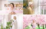 Hậu đại thắng với 8 chiếc cúp, Mamamoo 'bánh bèo hết cỡ' trong MV tặng fan