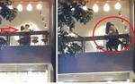 Dân mạng phản ứng gay gắt trước cảnh đôi trẻ có hành động đi quá giới hạn ngay tại quán trà sữa