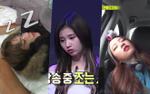 Ngủ gật trong gameshow - Fan không lỡ trách mà còn thương thần tượng vô cùng