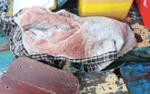 Vụ cô lái đò mất tích bí ẩn trên thuyền dính máu: Tìm thấy thi thể nạn nhân