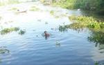 Bé trai 10 tuổi bị nước cuốn mất tích khi ra sông cùng chị