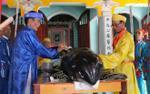 Quảng Ngãi: 'Thần nam hải' lại dạt vào bờ biển