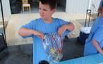 Cậu bé 9 tuổi kiếm hơn 133 triệu sau 2 tiếng bán nước chanh và lý do cảm động
