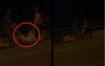 Xôn xao clip nữ sinh 14 tuổi bỏ nhà theo bạn trai quen trên mạng bị bố mẹ dọa ném xuống cầu