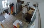 Phì cười với chú chó 'hoa hậu thân thiện' thản nhiên để trộm lẻn vào nhà lấy đồ