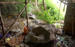 Phập phồng bên vách núi lở ở Kiên Giang