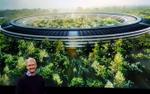 100% nhân viên Apple không được ngồi làm việc, lý do đằng sau sẽ khiến bạn bất ngờ